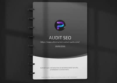Audit SEO AfterMarket Custom Parts